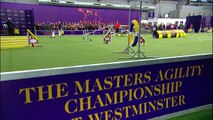 Westminster Kennel Club Dog Show : Masters Agility Championship At Westminster ตอนที่ 5 พากษ์ไทย