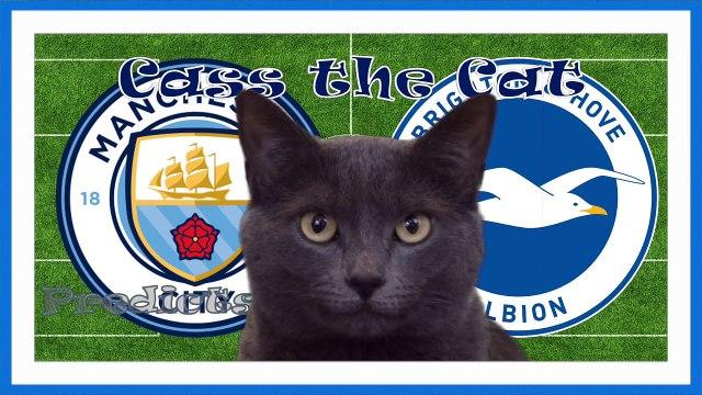 Manchester City vs Brighton Hove Albion Cass the Cat Predicts