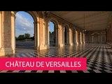 CHÂTEAU DE VERSAILLES - FRANCE, VERSAILLES