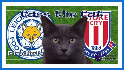 leicester city vs stoke city cass the cat predicts
