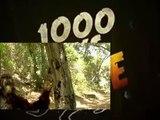 1000 Ways To Die S04 E11 4X11