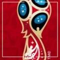 Coupe du monde : Goldman Sachs croit en les chances de la France (mais voit le Brésil sacré)