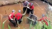 Des pompiers luttent contre un anaconda trouvé au fond d'un canal d'eaux usées