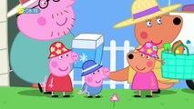 Peppa Pig Season 5 Ep 20 S05e20 Surfing Video Dailymotion