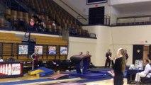 Springfield-Vault-Nicole Silva 2-7-15