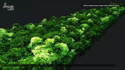3D Flyovers of the Amazon Show the Dramatic Effects of El Niño