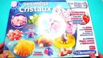 Comment faire des cristaux  Diy arbre magique ! test jouets #3┃Reva ytb