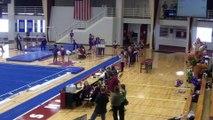 Madison Bowen Vault Springfield 2-21-16