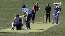 Le cricket en Suède en plein boom grâce aux migrants