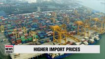 Import prices in May rises on higher global oil prices