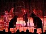08 décembre 2007 - Cirque, les tigres