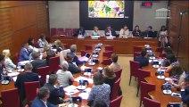 Commission des affaires culturelles : Audition de Mme Michèle Benbunan, pdg de Presstalis  - Mercredi 20 juin 2018