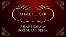 Ahmet Çiçek - Aslanı Çakala Boğduran Felek (45'lik)