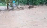 Parahnya Banjir Bandang di Banyuwangi, Warga Mulai Mengungsi