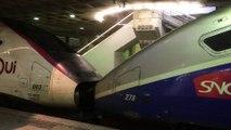 TGV 29000 ( Duplex ) et TGV 2N2 ( RGV 2N ou EuroDuplex ) - LGV Atlantique - Paris  Montparnasse