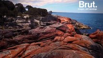 "Tasmanie : les roches oranges de la ""Bay of fires"""