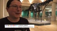 Brum Loves Dippy the Diplodocus