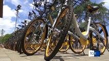 """A Lecce il bike sharing """"a punti"""" dove puoi lasciare la bici ovunque. Ecco come funziona"""