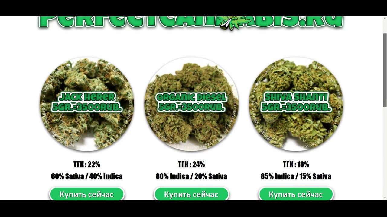 Купить марихуану киров посадили за семечки конопли