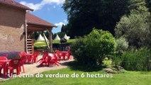 Vosges  :  les nouveautés de la Ferme Aventure