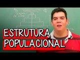 Estrutura Populacional - Extensivo Geografia | Descomplica