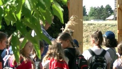 Vom Acker zum Brot - Projekt für Schulkinder