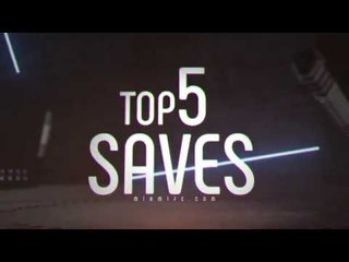 Top 5 Saves of 2017