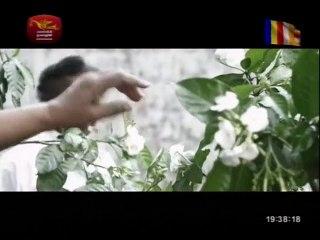 Sansare Piyasatahan 27/06/2018