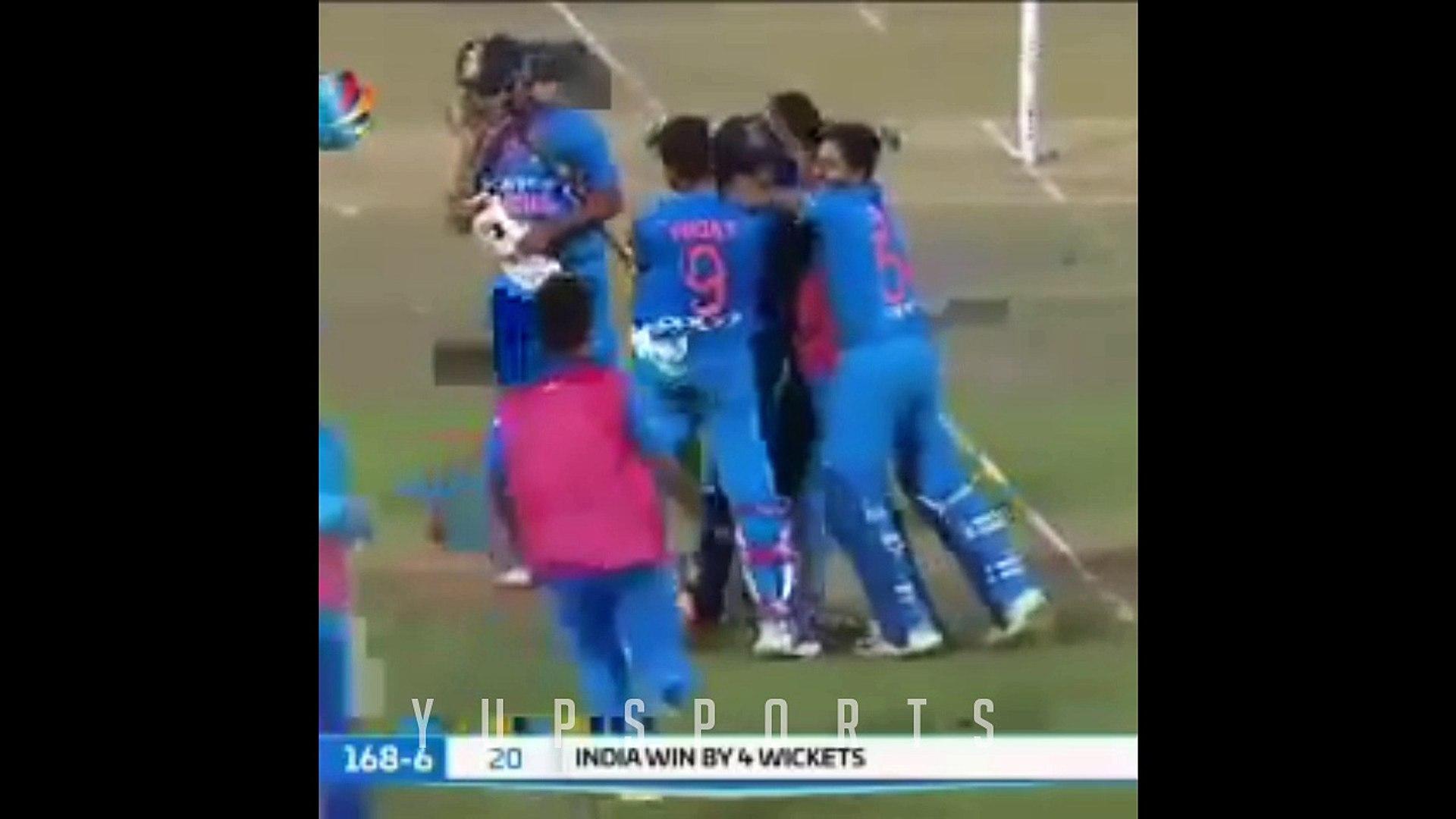 Cricket Beat Drops - Cricket Beat Drop Vines