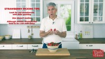 5 Strawberry Tips and Tricks