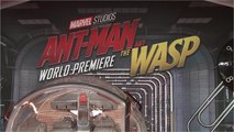 'Ant-Man and the Wasp' Hailed by Critics As Creative, Confident