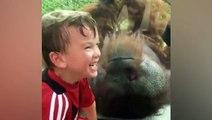 """فيديو مضحك.. صبي يكون صداقة فريدة مع """"إنسان غاب"""" في حديقة حيوان"""