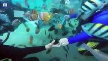 شاهد بالفيديو.. شاب يفاجئ صديقته بعرض زواج رومانسي تحت الماء