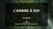 L'Arbre à Soi : Elagage et abattage d'arbres à La Boussac