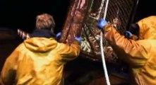 Deadliest Catch Crab Fishing in Alaska S03 - Ep04 Cheating Dth HD Watch
