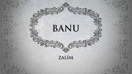 Banu - Zalim (45'lik)