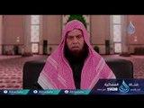 برومو برنامج | المنتقى من التفسير| الموسم الثالث |الشيخ عبد العظيم بدوي  في رمضان