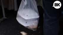 Do Bangkokians Want the Plastic Bag?