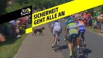 Tour de France 2018 - Sicherheit der Radfahrer