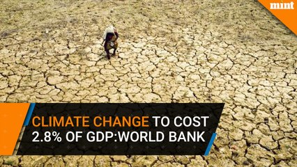 Climate change may cost India 2.8% of GDP : World Bank