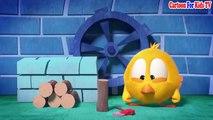 Where's Chicky Cartoon 2018  Where is Chicky Compilation #33  Desenho Animado Para Beb?
