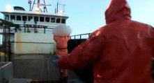 Deadliest Catch Crab Fishing in Alaska S03 - Ep12 A Frozen Finish HD Watch