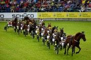 Faut-il jouer les chevaux disqualifiés au trot ?