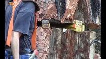 Amazing Dangerous Skills Fastest Tree Felling, Heavy Biggest