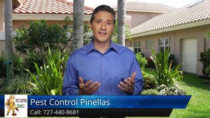 Seminole Termite & Pest Control Review of  Pest Control Pinellas Seminole FLSuperb 5 Star Revi...