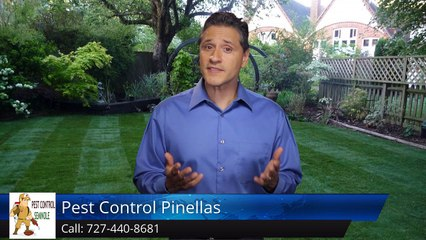 Seminole Termite & Pest Control Review of  Pest Control Pinellas Seminole FLRemarkable 5 Star ...