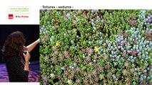 Conférence publique : La toiture végétalisée, véritable écosystème urbain ? (2/2)