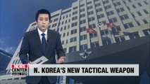S. Korea's Joint Chiefs of Staff won't confirm type of new weapon N. Korea tested last week