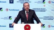 Cumhurbaşkanı Erdoğan: 'Biz biz Rusya ile ikili münasebetlerimizin çerçevesini hiçbir zaman diğer ülkelerin dayatmalarına göre belirlemedik'