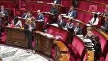 2ème séance : Programmation 2019-2022 et réforme de la justice (projet de loi) et renforcement de l'organisation des juridictions (projet de loi organique) (discussion générale commune) - Lundi 19 novembre 2018